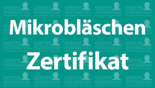 Mikroblaeschen_Zertifikat_Goethe_Pet