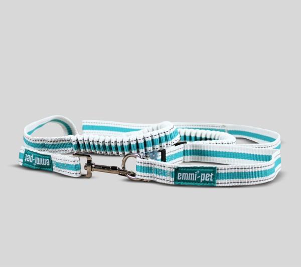 Hundeleinen und Halsbänder - Groß / Klein