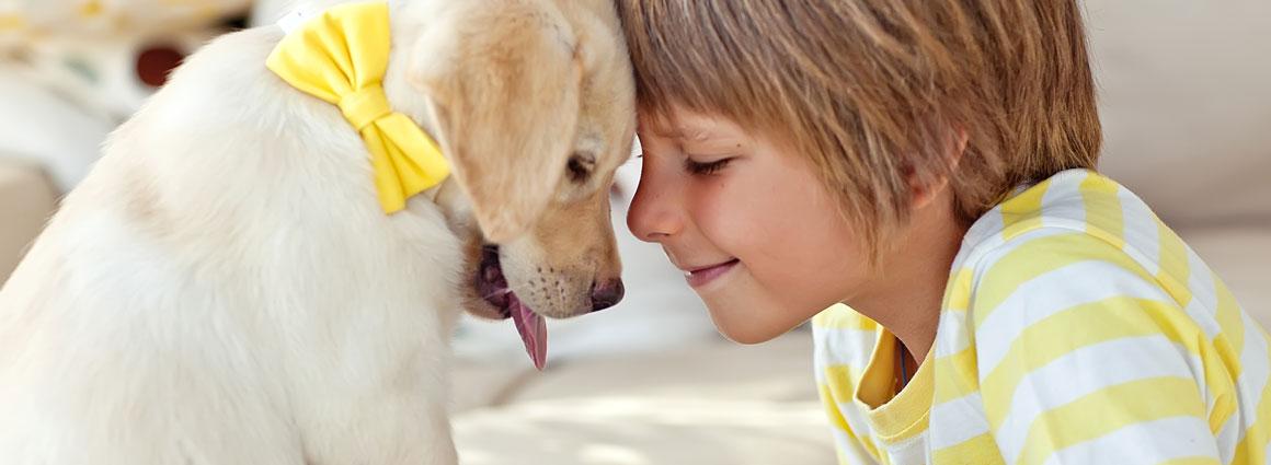 Hund_und_Junge